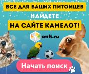 Газета Камелот, объявления о животных
